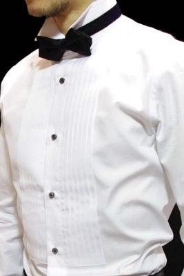 ウィングカラーシャツ(イカ胸)
