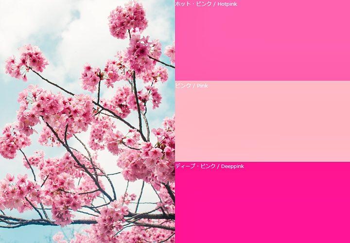 ピンクが与える色の効果,桜