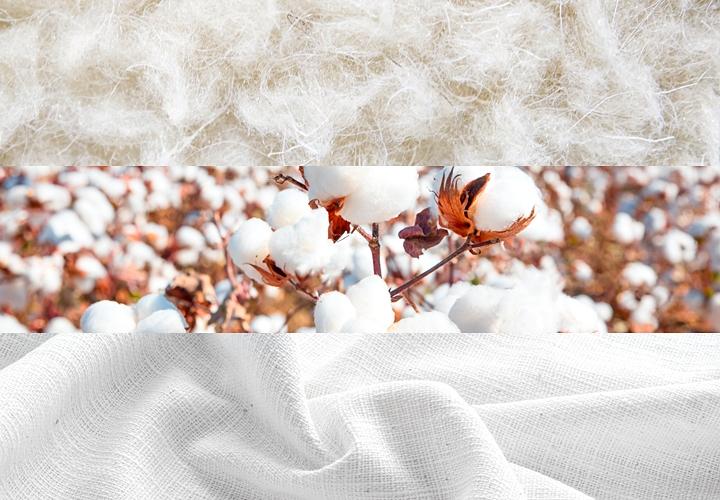 リネンスーツ,ウール・コットンとの違い,植物繊維